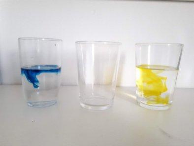 Experiência da absorção da água