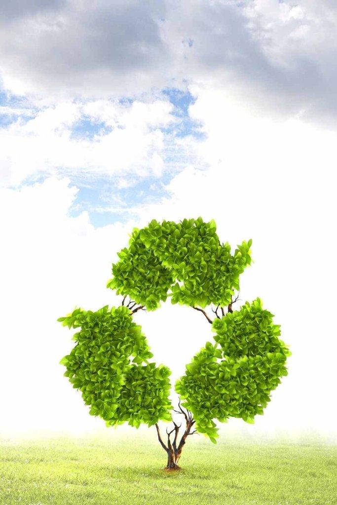 decoração sustentável (1)