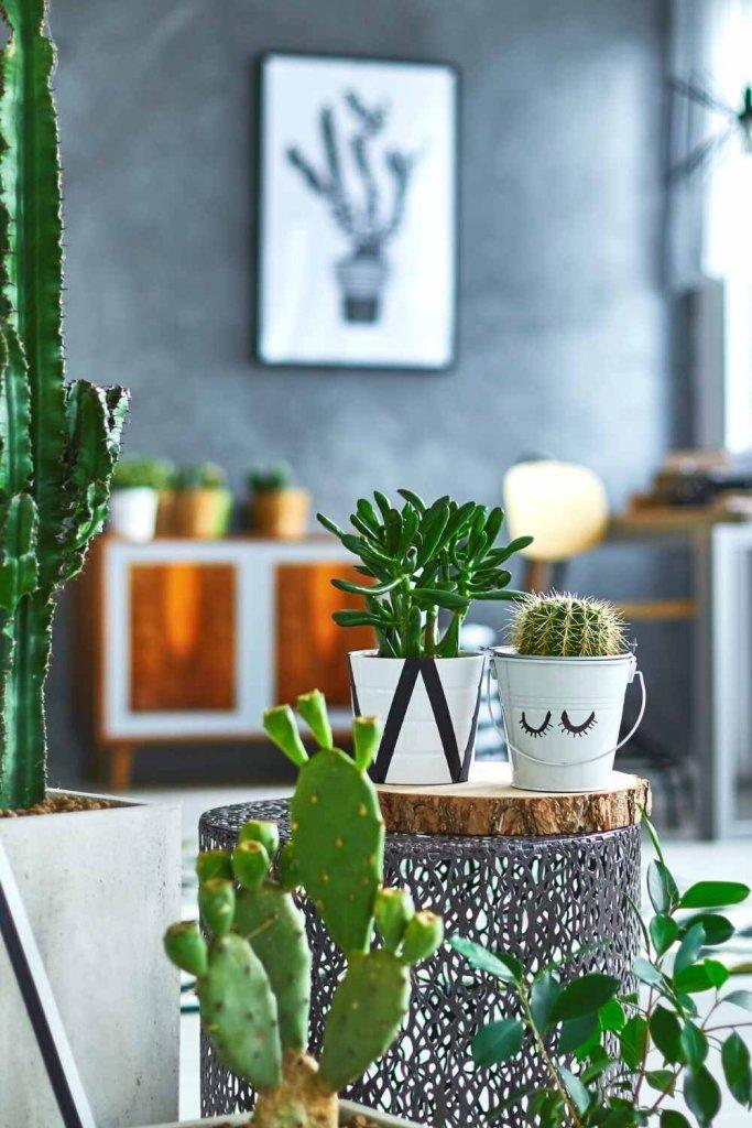 decoração sustentável (2)