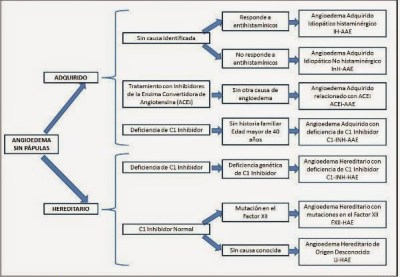 cuadro con Clasificación del angioedema según el Grupo de Trabajo Internacional sobre Angioedema Hereditario