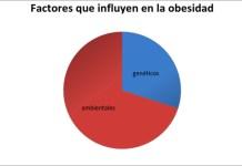 Factores que influyen en el desarrollo de la obesidad