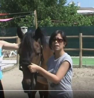 Beneficios de la terapia con caballos