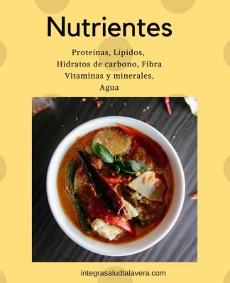 necesidades nutrientes