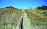 Winery Subsurface Irrigation
