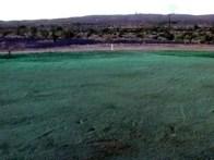 Final View of the leachfield