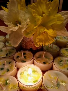 New Enchanted Tea Lights in the Healing Boutique, Daffodil for Rebirth and New Beginnings