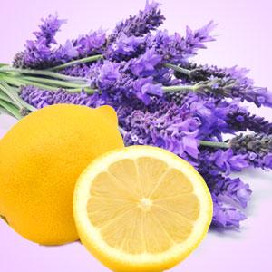 Lemon-with-lavender