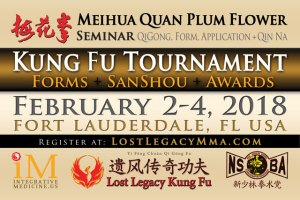 Acupuncture Tai Chi Qi Gong Seminar Ft Lauderdale Feb 2018