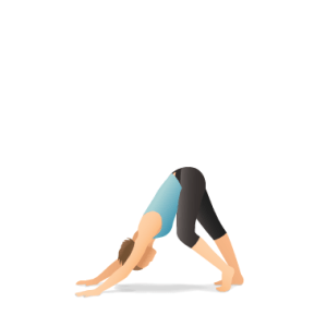downward_dog_hamstring_R