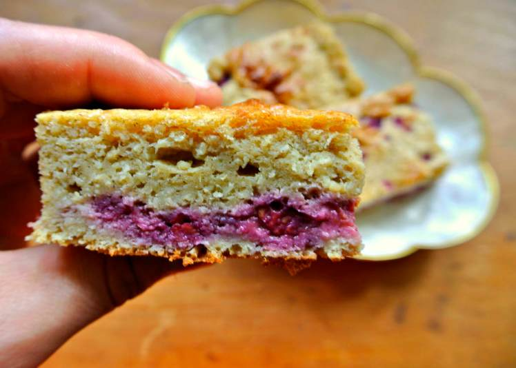 Raspberry Cinnamon Protein Coffee Cake