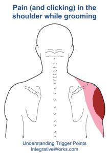 fi-pain-in-the-shoulder-while-grroming