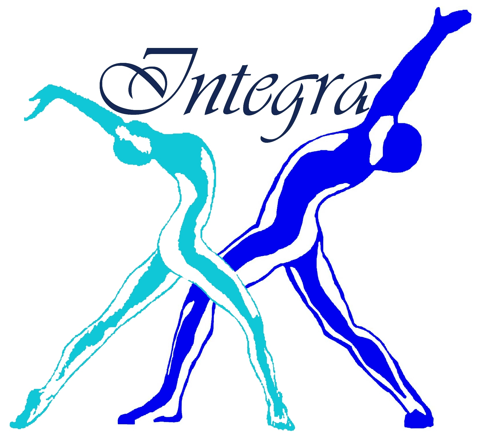 2008 Integra Master Logo34[1]