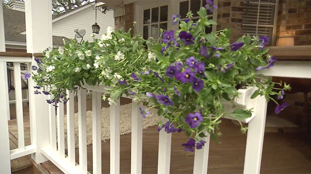 Using Plastic Rain Gutters as Flower Boxes