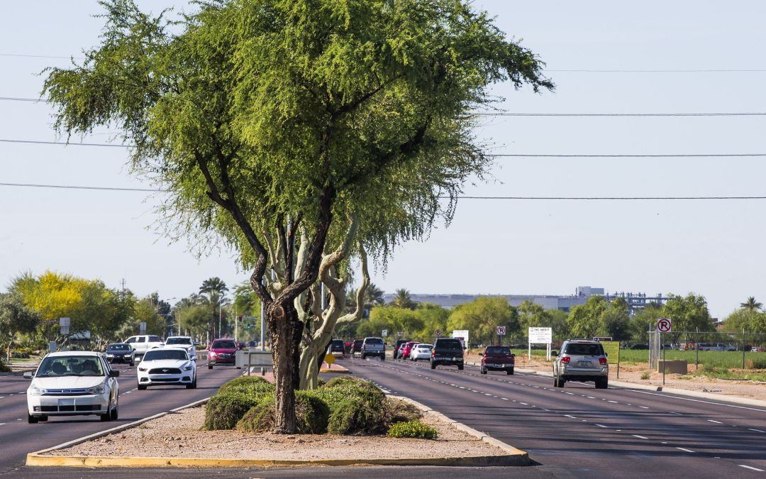 How a slab of Chandler asphalt ended up owing $90K in back taxes