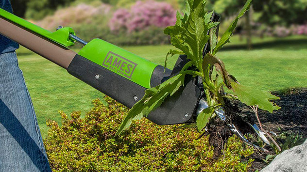 Ames Stand-Up Weeder | Today's Homeowner