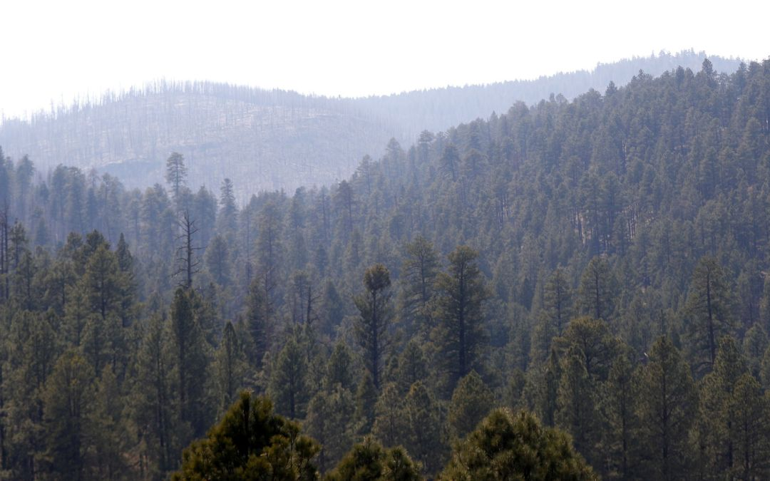 3 percent contained, 200 firefighters deployed