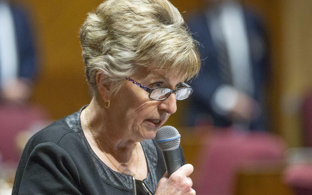 GOP Senate OKs charter reform