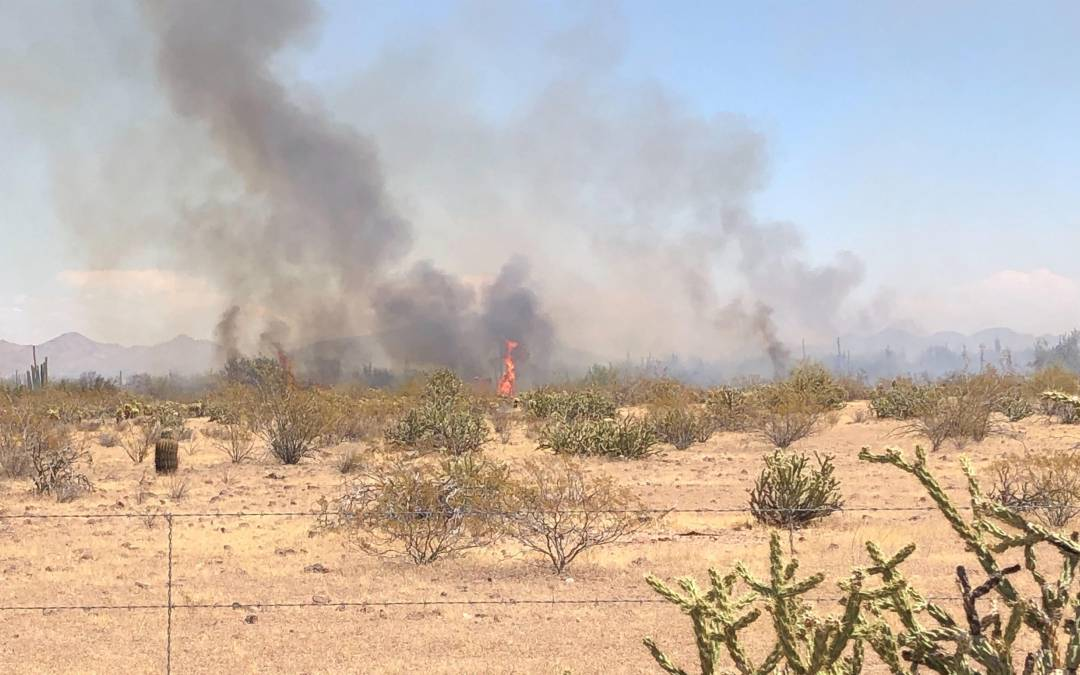 Brush fire in north Phoenix grows to 200 acres