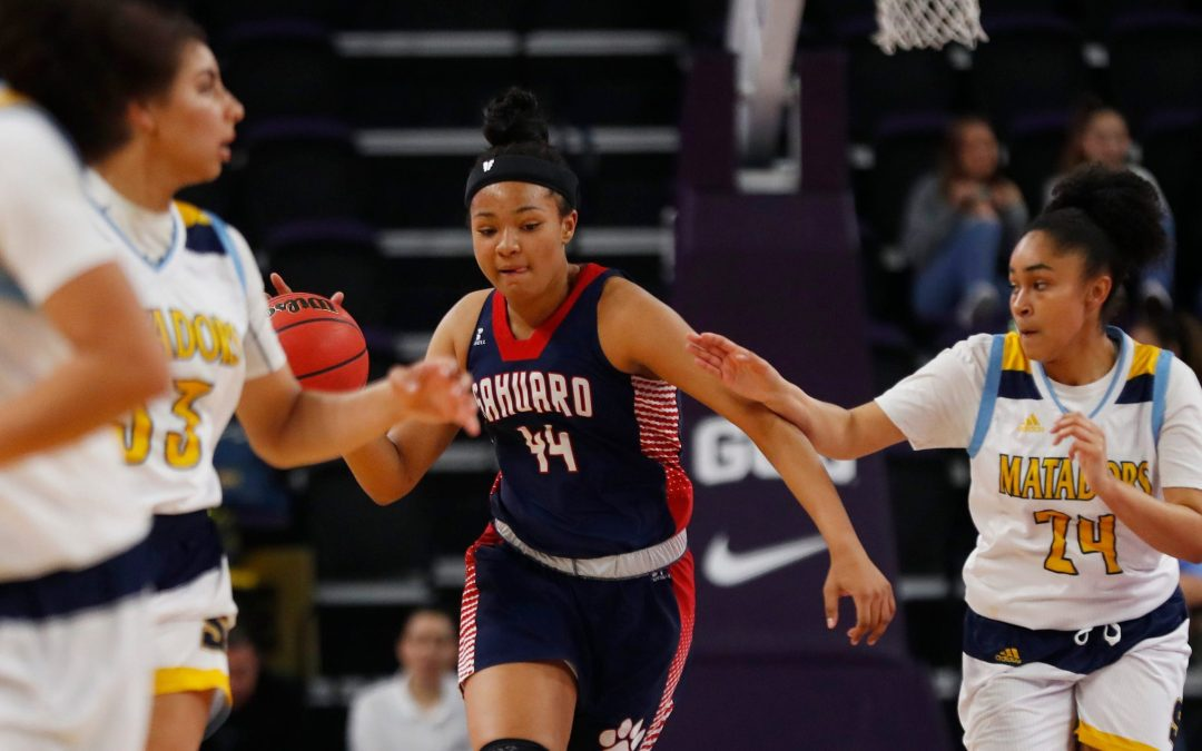 Arizona high school girls basketball's 100 best players in 2020-21