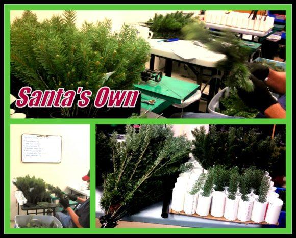 Santa's Own