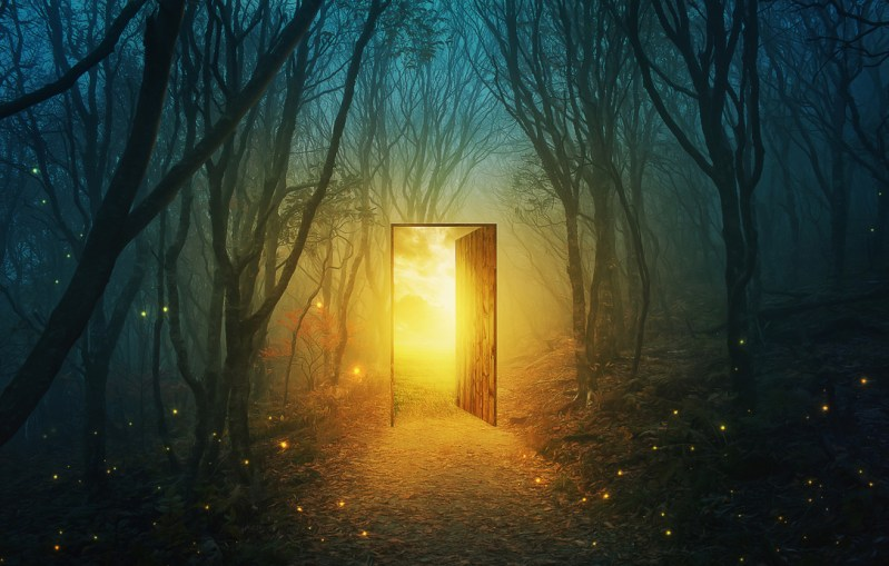 A mystical forest with a door opening with a yellow light.