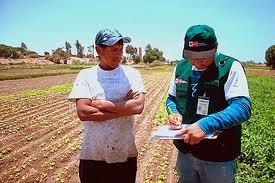 Entenda os benefícios da pesquisa de mercado agrícola