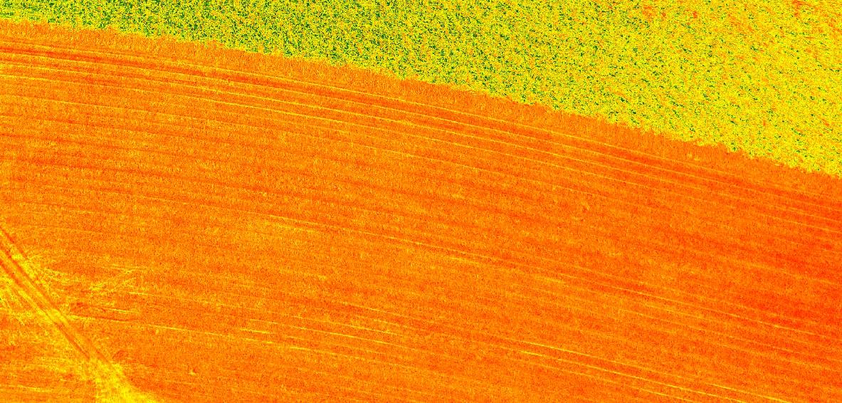 O que significa NDVI e o qual sua relação com agricultura