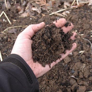 A curva de retenção de água no solo