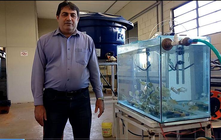 Sistema para tratamento de efluentes de piscicultura acoplado a hidroponia