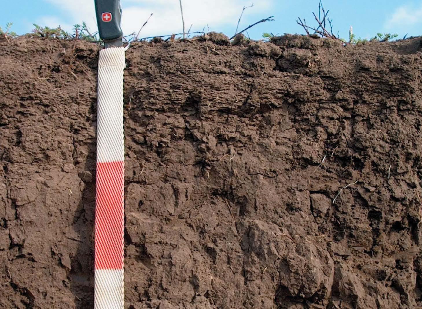O que é CAD do solo?