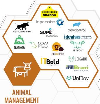 As principais startups de pecuária no Brasil em 2018