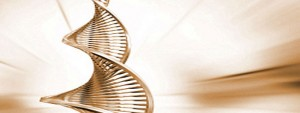 Is There Any Proof for Darwinian Evolution?