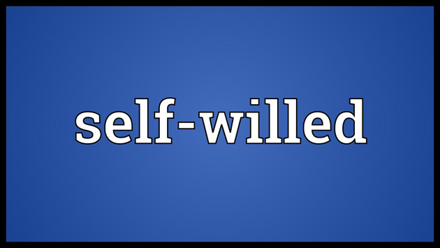 God (Allah) is the Self-willed