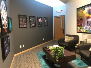 office picture 3 | Lisa Taylor | Intellect Neurofeedback | Northfield, MN