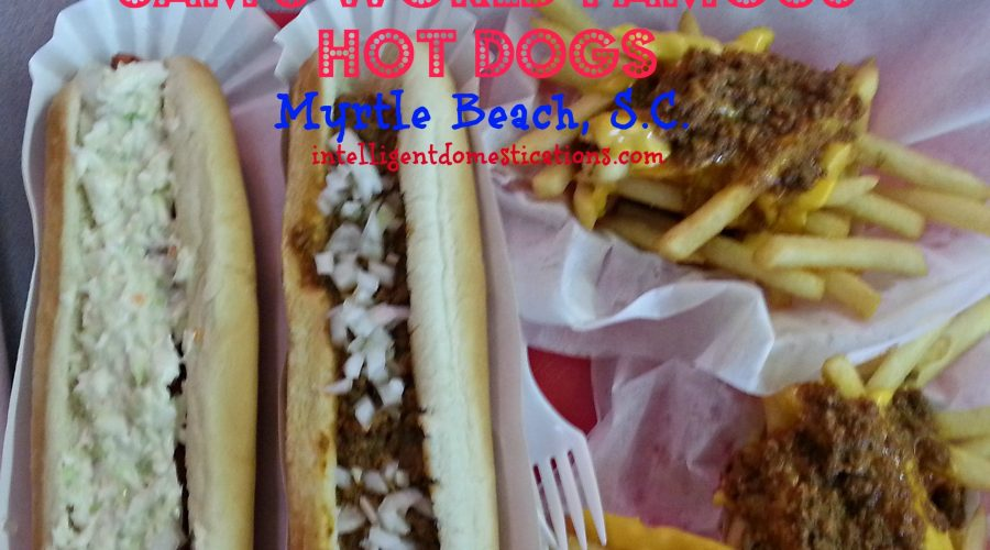 Our Hot Dog Tour Begins at Myrtle Beach