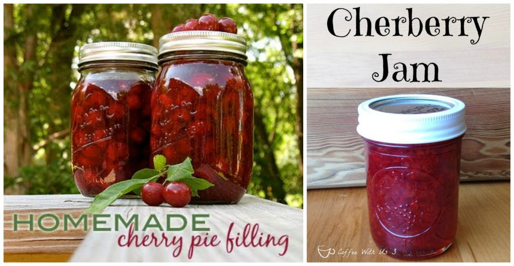Jams, Pie filling and more Cherry goodies recipe round up at www.intelligentdomestications.com
