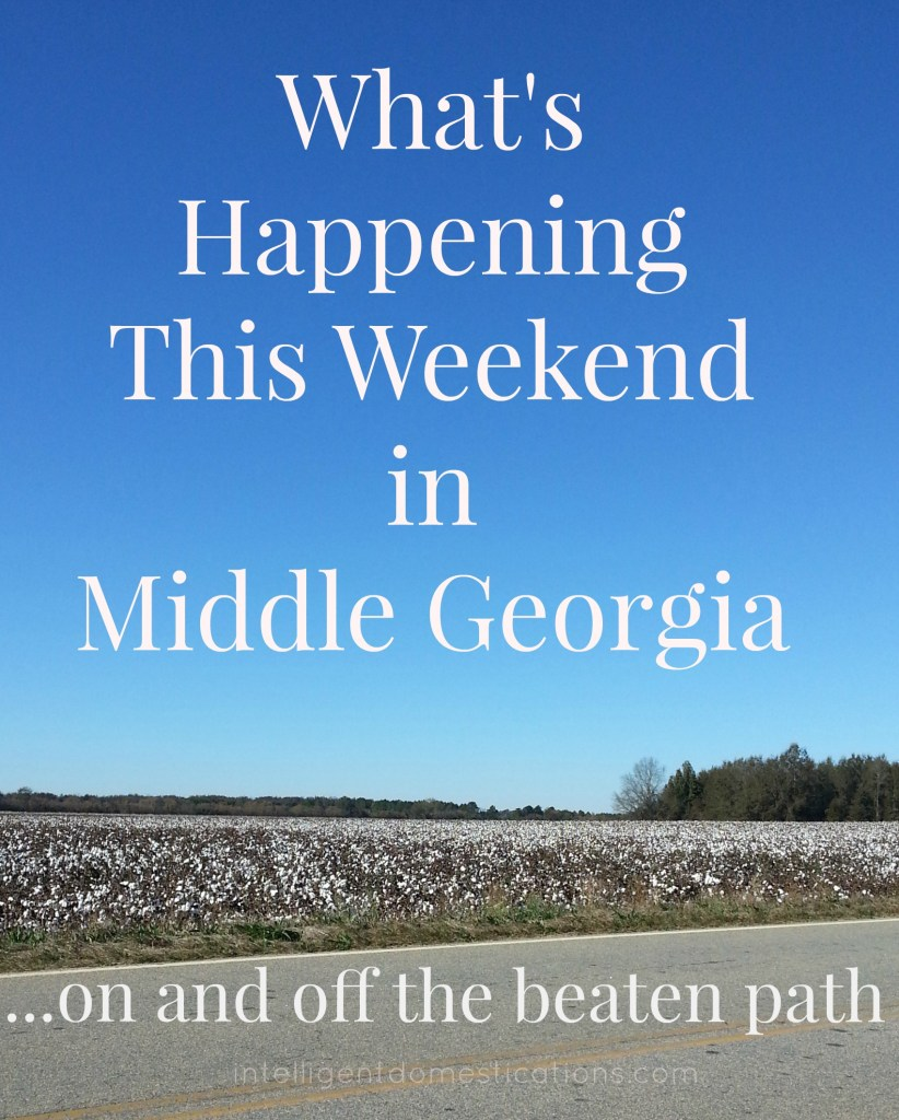 What's Happening this weekend in middle Georgia. Find updates every Thursday for middle Ga. events at intelligentdomestications.com