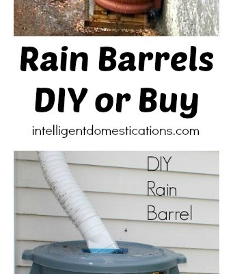 Rain Barrels: DIY or Buy