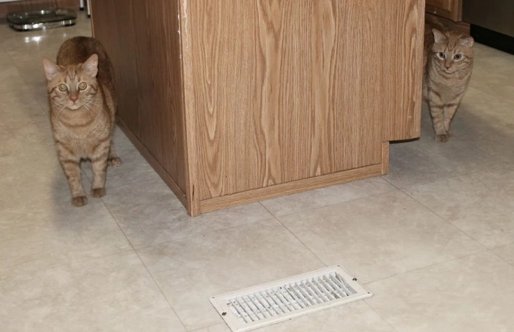 Kitchen vinyl tile before the new LVT flooring was installed.