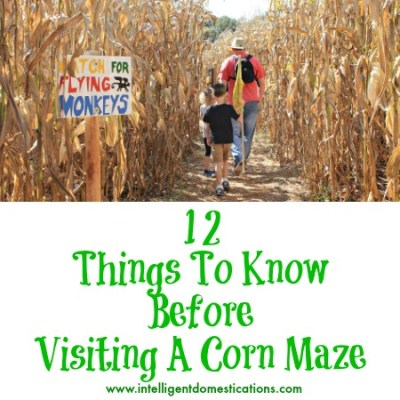 Corn Mazes in Georgia 2015 & 12 Things To Know Before Visiting A Corn Maze