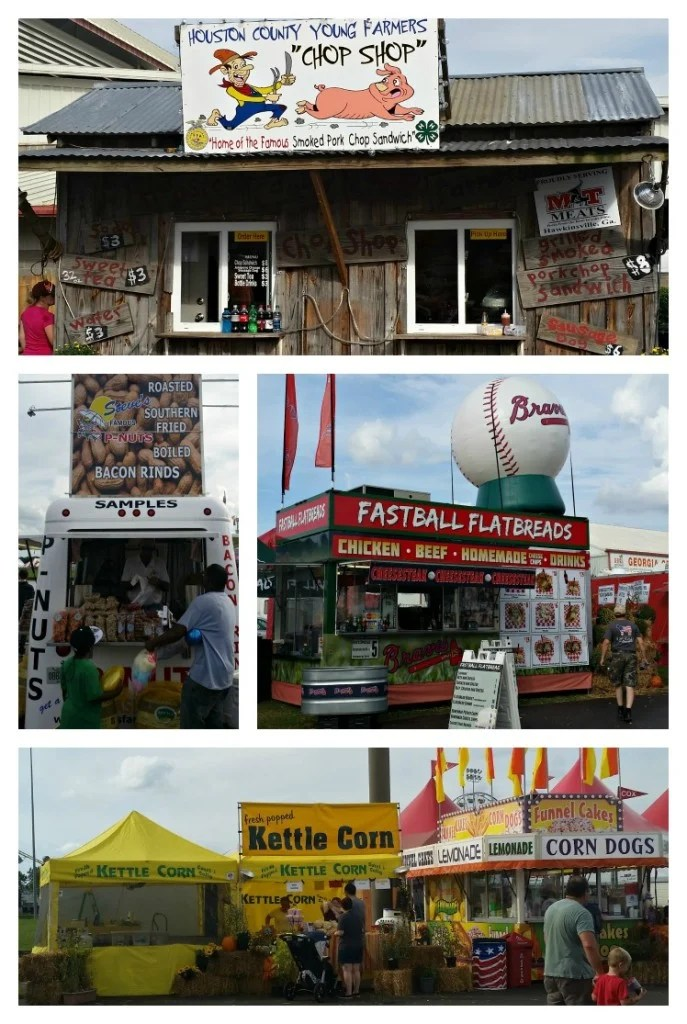 Ga. National Fair Food 2 2015