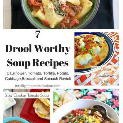 7 Drool Worthy Soup Recipes