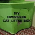 DIY Oversized Cat Litter Box.intelligentdomestications.com