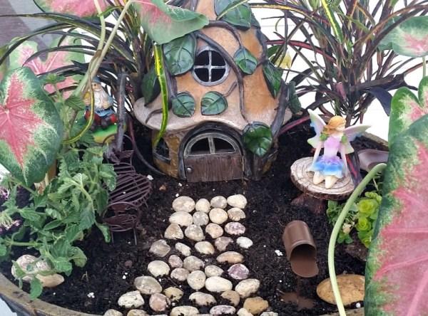 My Fairy Garden Tour 2016. Fairy Garden Ideas. Flowers to use in a flower garden. #fairygarden #gnomes #fairygardenideas