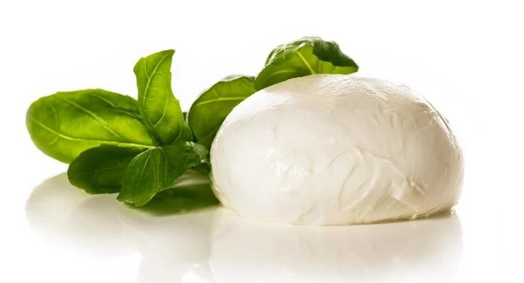 Mozzarella cheese ball with a Basil leaf