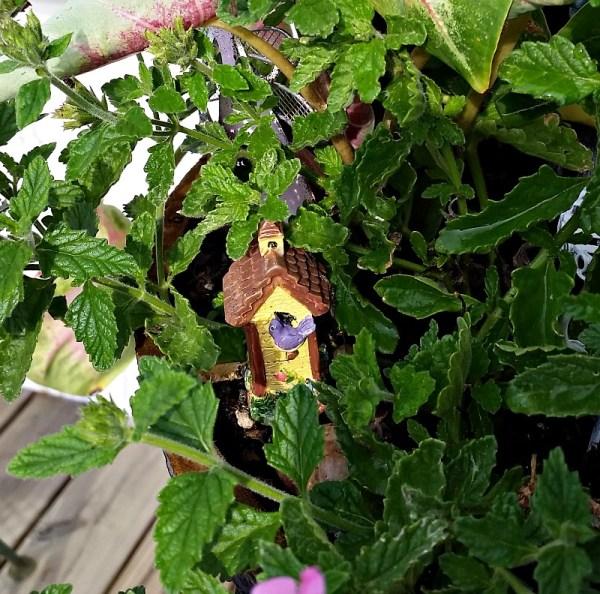 My Fairy Garden Birdhouse is actually a cheese fork! My Fairy Garden Tour 2016. Fairy Garden Ideas. Flowers to use in a flower garden. #fairygarden #gnomes #fairygardenideas