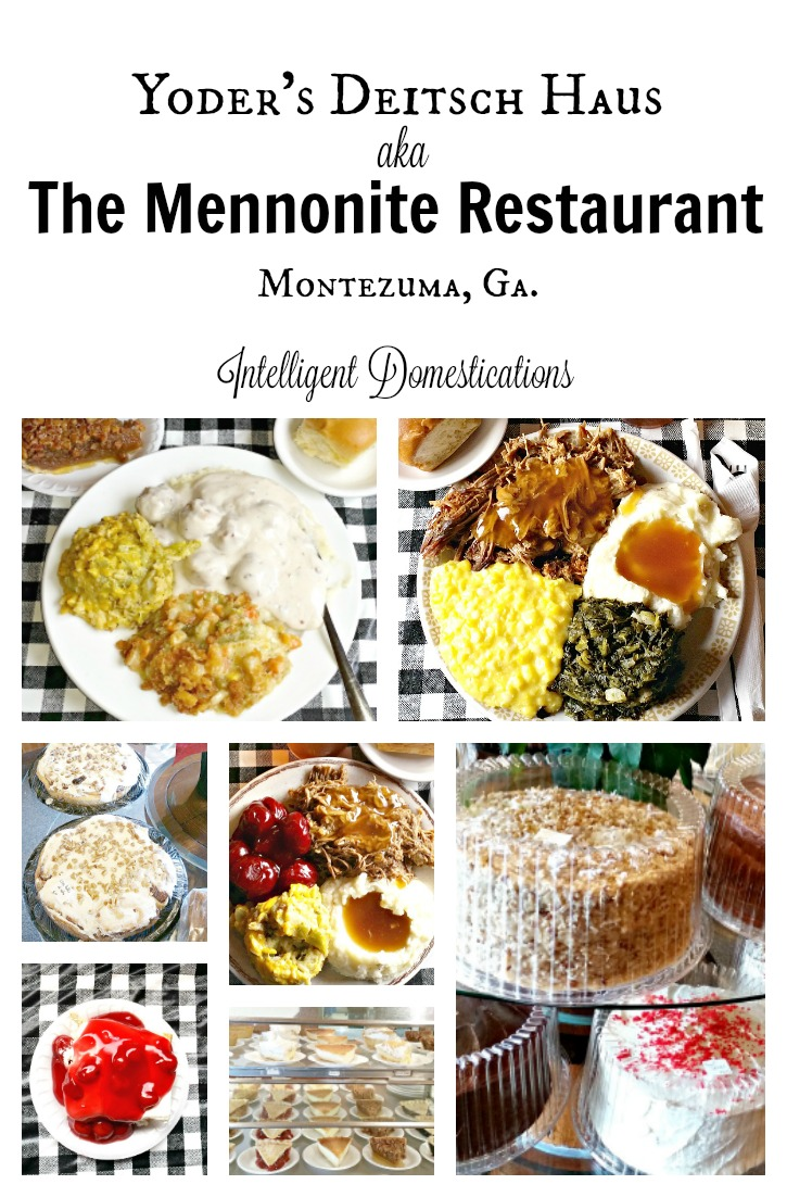 the-mennonite-restaurant-review-at-intelligentdomestications-com