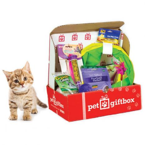 petgiftbox-cat