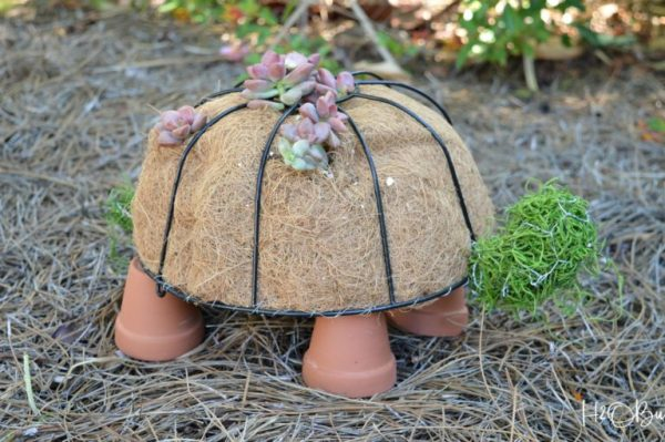 how-to-make-turtle-topiary-H2OBungalow