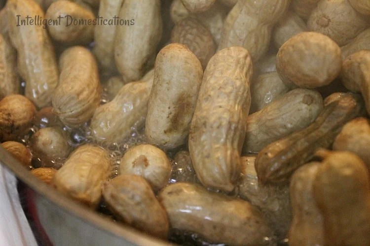 How to cook boiled peanuts at home